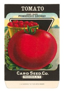 Tomato-Seed-Packet